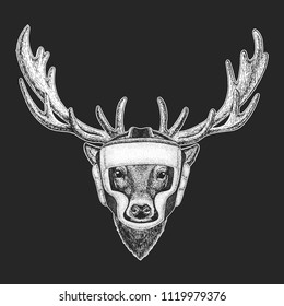 Athletic animal Deer Boxing champion. Print for t-shirt, emblem, logo. Martial arts. Vector illustration with fighter. Sport competition.
