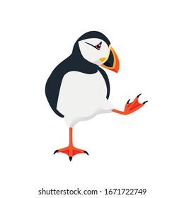 Atlantic puffin bird cartoon animal design flat vector illustration isolated on white background