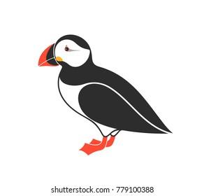 Atlantic puffin. Bird. EPS 10. Vector illustration