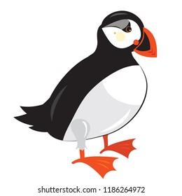 Atlantic puffin bird - Fratercula arctica, isolated on white, vector illustration