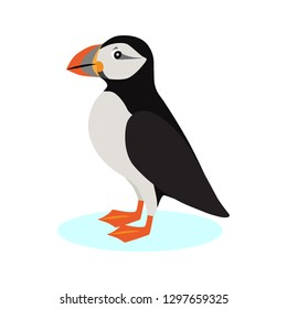 Atlantic puffin icon, polar bird with colorful beak isolated on white background, species of seabird, vector illustration