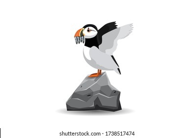 Atlantic puffin side view. Northern bird on rock with fish in its mouth. Vector Flat Illustration