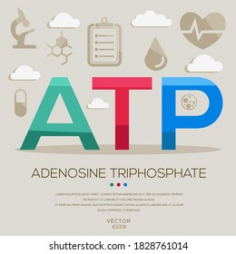 ATP mean (adenosinetriphosphate) medical acronyms ,letters and icons ,Vector illustration.