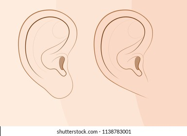 Attached earlobe and free earlobe in comparison. Different looks of the human ear because of recessive gene frequency. Comic vector illustration.
