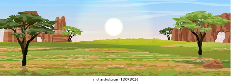 Australia. Dry grass, rocks and acacia trees. Wild nature of Australia. Realistic vector landscape.