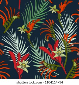 Australia kangaroo paw flowers seamless pattern on dark blue background