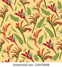 Australia kangaroo paw wild flower seamless pattern