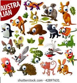 australian animals big vector set