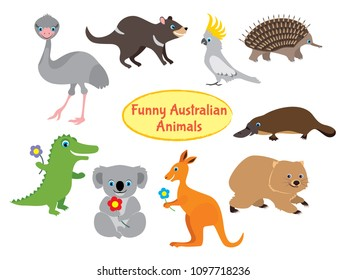Australian animals isolated on white. Set of funny vector animals in flat style. Wallaby, kangaroo, Tasmanian devil, koala, crocodile, cockatoo, parrot, ostrich emu, platypus, echidna, wombat.