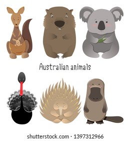 Australian animals set with kangaroo, wombat and koala bear along with black swan and echidna, platypus. Australian native animals hand drawn vector illustration collection