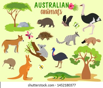 Australian animals. Vector animal icons of Australia, kangaroo and koala, wombat and  platypus and echidna in cartoon style