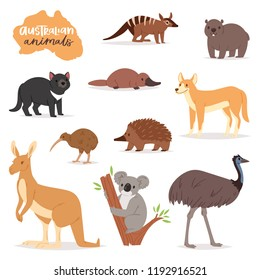 Australian animals vector animalistic character in wildlife Australia kangaroo koala and platypus illustration set of cartoon wild wombat and emu isolated on white background
