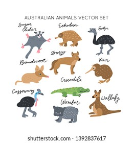 Home Decor Digital Downloads Australian Mammals Collection of 182 Public Domain Images Home Furnishing Australian Animal Images