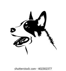 Australian cattle dog - vector illustration