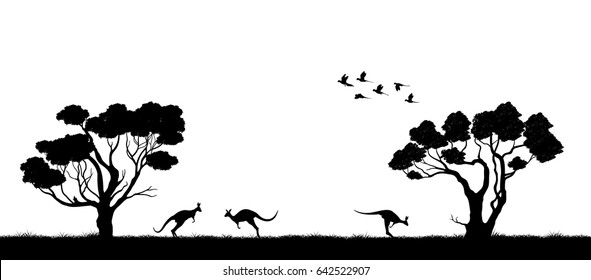 Australian landscape. Black silhouette of trees and kangaroo on white background. The nature of Australia. Isolated vector graphic
