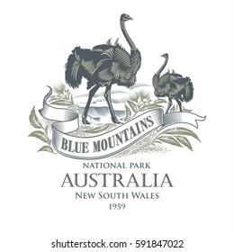 Australian Ostrich, national Park Blue Mountains, Australia, illustration, vector