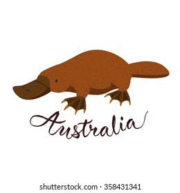 Australian platypus. Vector animal. Australia calligraphic.