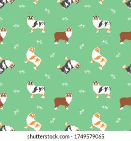 Australian Shepherd or Aussie seamless pattern background. with grass. Cartoon dog puppy background. Hand drawn childish vector illustration. Great for wallpaper, textile design.