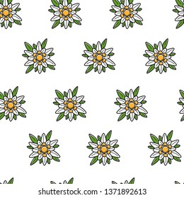 Austrian symbol edelweiss wild flower seamless pattern vector plant blossom travel to Austria endless texture bud and leaves wallpaper print traveling and tourism backdrop nature and flora greenery