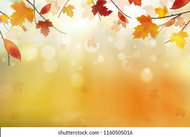Autumn abstract background. Autumn falling red, yellow, orange, brown leaves on bright background. Vector autumnal foliage fall of maple leaves. Design concept for seasonal holiday greeting card.