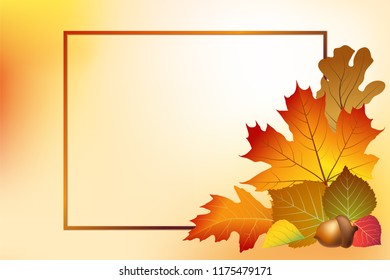 Autumn background with bright and colorful autumn leaves corner. Vector illustration