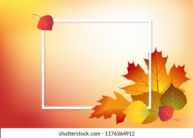 Autumn background with bright and colorful autumn leaves. Fall frame vector illustration