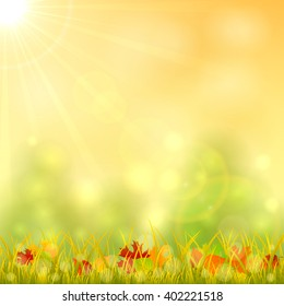 Autumn background with fallen leaves in the grass and and bright sun in the sky, illustration.
