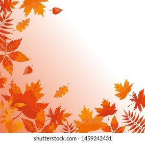 Autumn background with fallen leaves. Vector banner