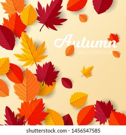 Autumn background with flat leaves design