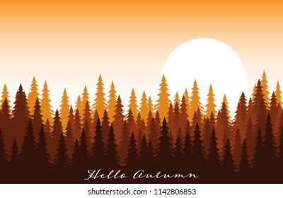 Autumn background with forest landscape with fir trees at dawn and hello autumn text.