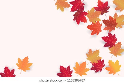 Autumn background layout decorate with red maple leaves. Design of Autumn for promo poster and frame leaflet. Vector illustration template.rate with red maple leaves