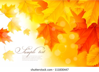 Autumn background with leaves  Back to school  Vector illustration