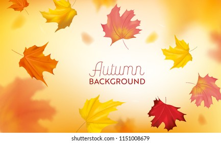Autumn Background with Red and Yellow Maple Leaves. Nature Fall Seasonal Design Template for Web Banner, Leaflet, Sale, Poster. Vector illustration
