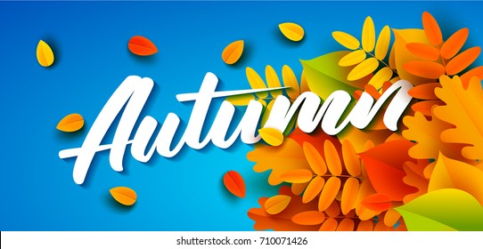 Autumn banner template with lettering. Bright fall leaves