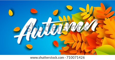autumn banner template lettering bright fall のベクター画像素材