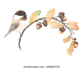 Autumn beautiful frame with bird Black-capped Chickadee, acorns, oak branches and leaves. Vector illustration in vintage watercolor style.