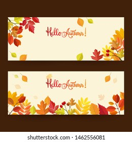 autumn with beautiful leaves. background, banner template, poster or card.