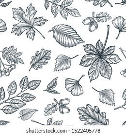 Autumn black white outline leaves seamless pattern. Vector hand drawn sketch illustration of forest plants. Fall nature background design. Trendy fashion textile or packaging print.