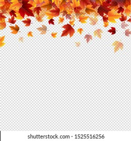 Autumn Border With Autumn Colorful Leaves transparent background With Gradient Mesh, Vector Illustration
