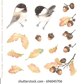 Autumn Collection of birds Black-capped Chickadee, acorns, oak branches and leaves. Vector illustration in vintage watercolor style.