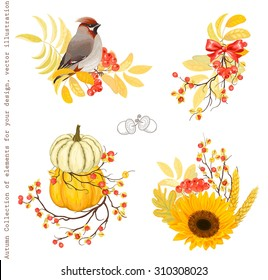 Autumn Collection of design decorations with pumpkins, branches rowan and Oriental Bittersweet, bird and sunflower, vector set 1.