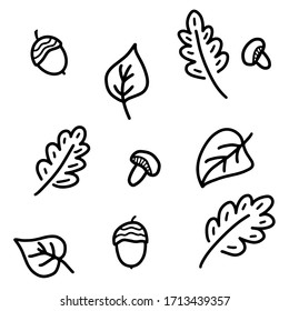 Autumn doodle set on a white background. Black and white vector illustration of an autumn set of acorns, leaves and mushrooms. Isolated objects for print, coloring, decoration.