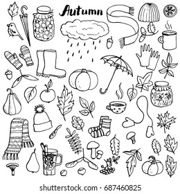 autumn doodle set, vector isolated hand drawn elements