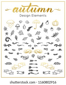 Autumn Fall in Love Design Elements. Set of seasonal autumnal decorative elements hand drawn acorns, leaves, umbrella, pumpkin, arrows, wind and other. Lettering inscriptions.