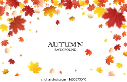 Autumn falling leaves background Vector template. Leaf vector