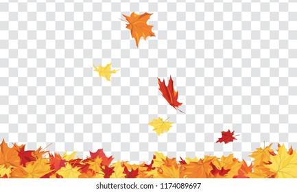 Herbstrahmen mit Ahornblättern auf transparentem Hintergrund (Alpha).  Vektorgrafik.