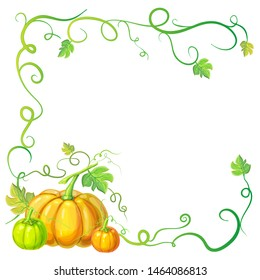 autumn frame with pumpkins and vines, leaves and place for text. Thanksgiving, halloween or corn festival card template, border or banner with pumpkins, leaves, curly tendrils. pumpkins composition