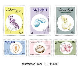 Autumn Fruits, Post Stamps Set of Hand Drawn Sketch Assyrtiko Grape, Nashi Pear or Chinese Pear, Honeydew Melon, Apple and Angel Peach in Trendy Origami Deep Paper Art Carving Style.