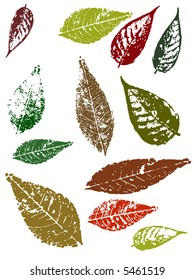 Autumn Grunged Leaves