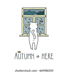 Autumn is here. Doodle vector illustration of white cat looking through the window on a rainy day